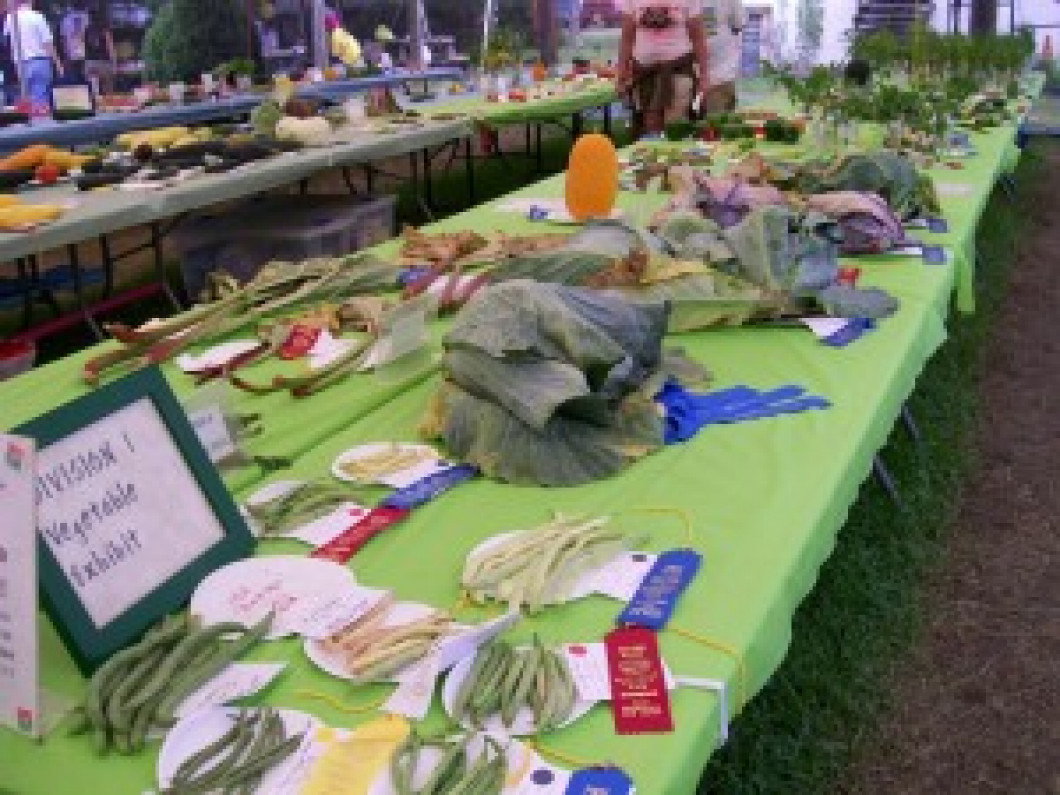 Division 1 – Vegetable Exhibits